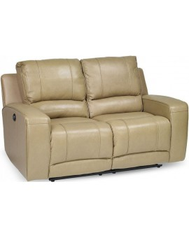 Terrence Leather Power Reclining Loveseat MNY2156-2P | Picture 1